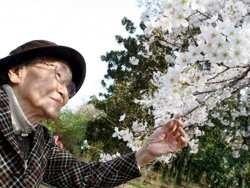 чому японські старі прагнуть сісти у в'язницю