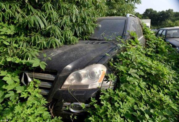 покинута паркування авто на мільйони доларів