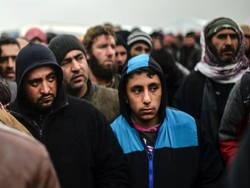 у канаді біженці домагаються молоденьких школярок