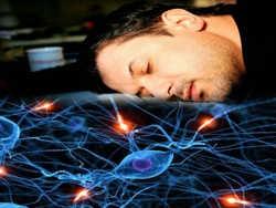 уві сні мозок розуміє і чує слова
