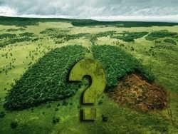 врятувати планету, заощаджуючи воду в унітазі, не вийде