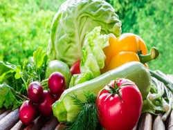 органічну їжу на кожен стіл