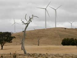катастрофа енергомережі в австралії виявляє мінуси модного енергетики