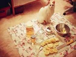 я рік пив воду з медом і лимоном вранці