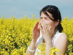 алергія – захворювання 21 століття
